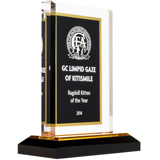 Royal Black & Gold Acrylic Award