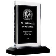 Black & Silver Royal Acrylic Awards