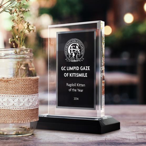 black silver royal acrylic awards