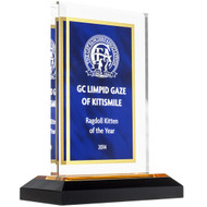 Blue and Gold Acrylic Award