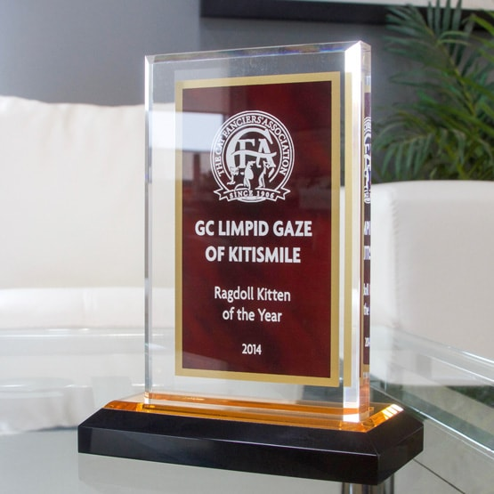 Red And Gold Acrylic Award