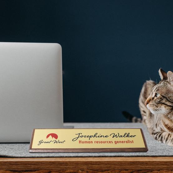 Walnut Desk Wedge Name Plates