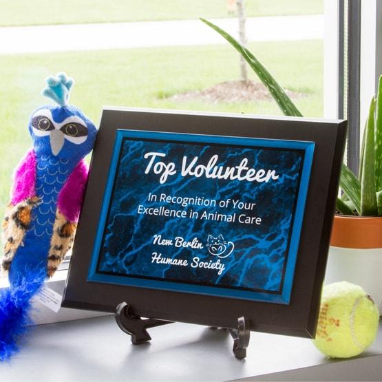 Blue Acrylic Plaque
