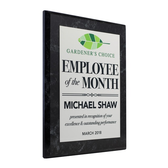 personalized employee of the month retro award plaques